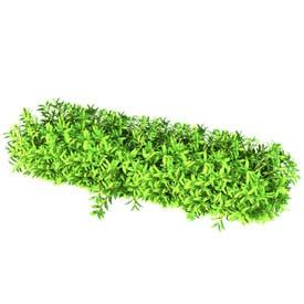 Vegetation - higrass 3D Object | FREE Artlantis Objects Download