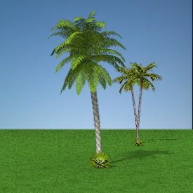 kelapa 3D Object   FREE Artlantis Objects Download