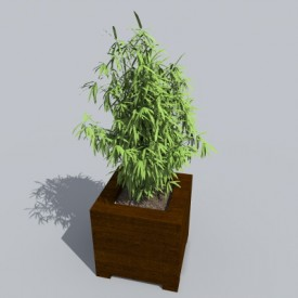 Bamboo 3D Object | FREE Artlantis Objects Download