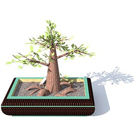 Ficus Bonsai 3D Object | FREE Artlantis Objects Download