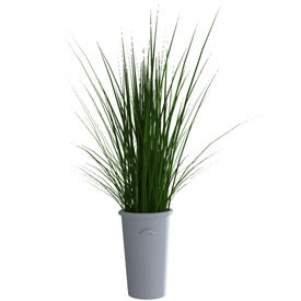 Plant in vase 3D Object | FREE Artlantis Objects Download